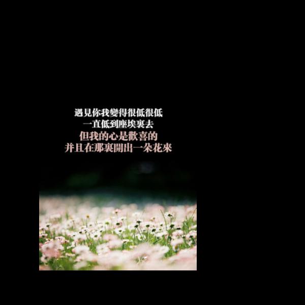 文字控21-双面定制扑克牌(圆角)微商