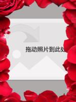 高贵红玫瑰花海相框-16寸木版画竖款