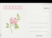 花开,半夏-全景明信片(横款)套装