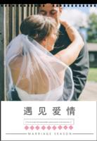 陪伴是最长情的告白(记录爱情、婚庆婚纱均适合,页内外样片可替换)-A3挂历