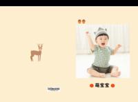 萌宝宝(清新插画系列 图可换)-硬壳对裱照片书30p