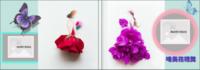 唯美的花裙舞(超大容量 至少可放109张照片)-6x8轻装文艺照片书82p