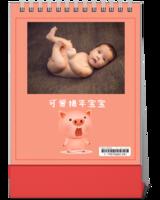 可爱猪年宝宝-10寸竖款单面