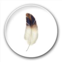 飞起来吧羽毛!-5.8个性徽章