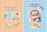 童年的小秘密--致童年宝贝的惊喜-8X12锁线硬壳精装照片书32p