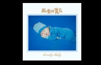 亲爱的 亲爱的宝贝 lovely baby (图可换)82-8x8印刷单面水晶照片书