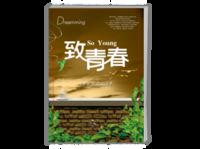 致青春-A4杂志册26p(哑膜、胶装)