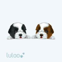 luloo
