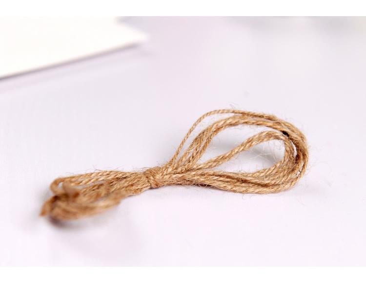 照片挂绳矢量图