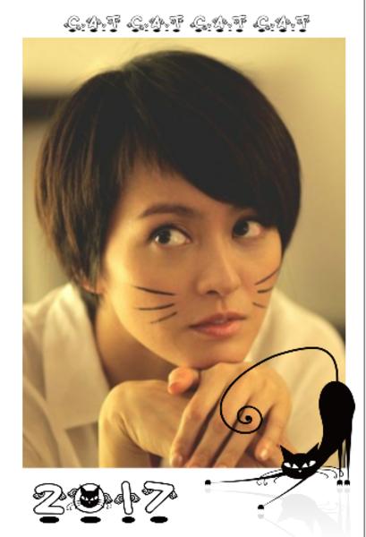 简单的小猫咪-定制lomo卡套装(25张)