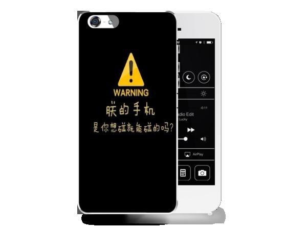 恶搞个性朕的手机壳-苹果5手机壳