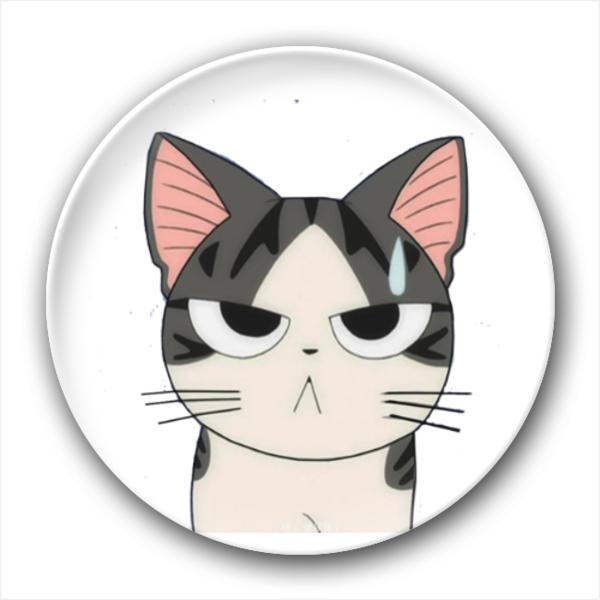 甜甜私房猫分享展示