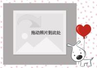 小巴狗的爱-彩边拍立得横款(6张P)