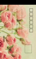 玫瑰复古风-全景明信片(竖款)套装