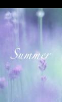 美丽故事6-summer-全景明信片(竖款)套装
