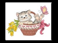 可爱的小猫-个性鼠标垫