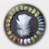 【落羽】-2.5徽章