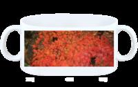 枫叶满天29-白杯