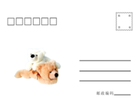 卡通  小熊-全景明信片(横款)套装