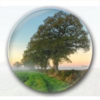 绿色风景-4.4个性徽章