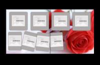 浪漫玫瑰情人-贝蒂斯8X8照片书