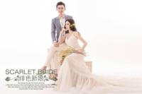 绯色新娘-高档大气婚纱爱情写真(装饰可移动、图片可换)-9寸木版画横款