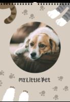 我家的小宠物-样图可换-等风也等你-A3双月挂历