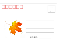 精美时尚枫叶明信片-全景明信片(横款)套装