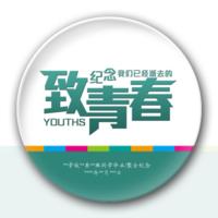 致青春(青春毕业聚会纪念)-4.4个性徽章