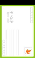 爱的永恒 枫叶情怀伊人的眷恋相思-全景明信片(竖款)套装