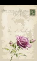 致我的爱-2种唯美图案明信片-全景明信片(竖款)套装