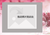 【粉色玫瑰】-彩边拍立得横款(36张P)
