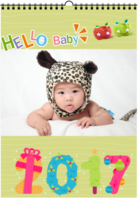 Hello Baby成长记-(微商)挂历(A3双月挂历)