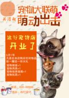 宠物店宠物粮食售卖小动物宣传海报-b2海报