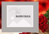 单反浪漫红玫瑰(玫瑰之恋)-彩边拍立得横款(18张P)
