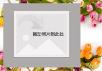 梦幻唯美浪漫--郁金香-彩边拍立得横款(18张P)