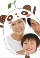 熊猫宝宝lomo卡 熊猫系列卡-定制lomo卡套装(25张)
