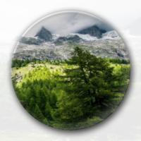 绿色森林风光-4.4徽章-4.4个性徽章