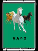 骏马齐驾-A4杂志册(32P)