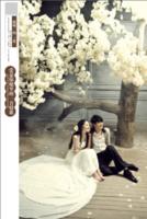 我唯一的爱(简洁、韩版个性超大容量婚纱相册)-8x12双面水晶银盐照片书30p