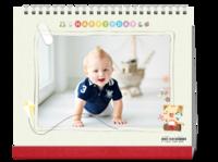 放飞的风筝(封面样图可替换)适合送给宝宝儿童-10寸双面印刷台历