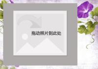 【花之绽放】-彩边拍立得横款(6张P)