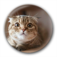 超萌的猫主子-卡通小人钥匙扣