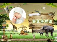 野生动物园-亲子 甜美 萌 趣味-美好生活照片书