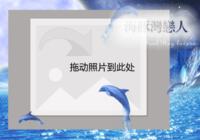 【海豚湾恋人】-彩边拍立得横款(36张P)