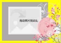 zs 简单色调花的野望-彩边拍立得横款(18张P)