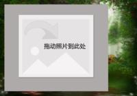 【神秘森林】-彩边拍立得横款(6张P)