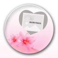 粉色百合花div个性照片-创意冰箱贴