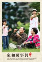 送父母送长辈 祝寿 全家福 中国风-8x12双面水晶银盐照片书30p