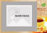 叶子006-彩边拍立得横款(6张P)